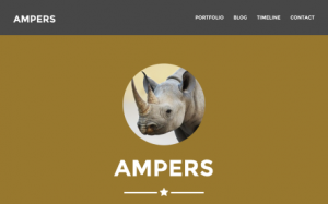 ampers website